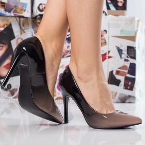 pantofi in degrade